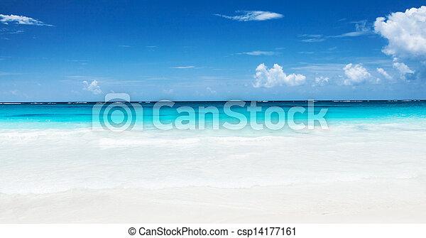 όμορφος , παραλία  - csp14177161