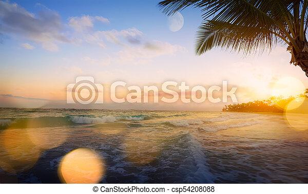 όμορφος , τέχνη , πάνω , θερμότατος ακρογιαλιά , ανατολή  - csp54208088