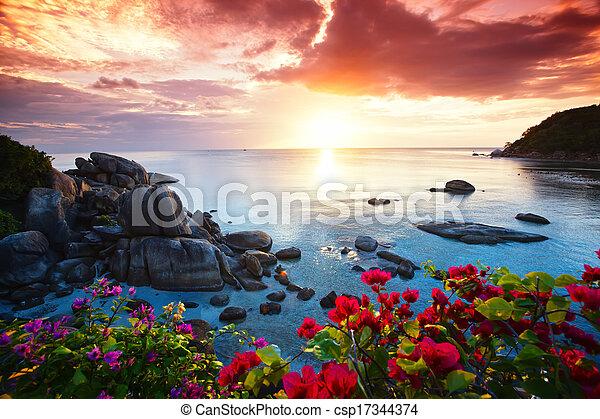όμορφος , koh samui , αγάλλομαι , θέρετρο , πρωί , γαλήνιος , παραλία  - csp17344374