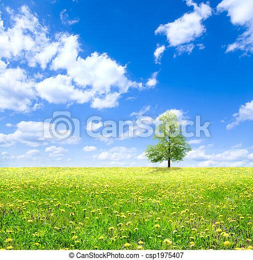весна - csp1975407