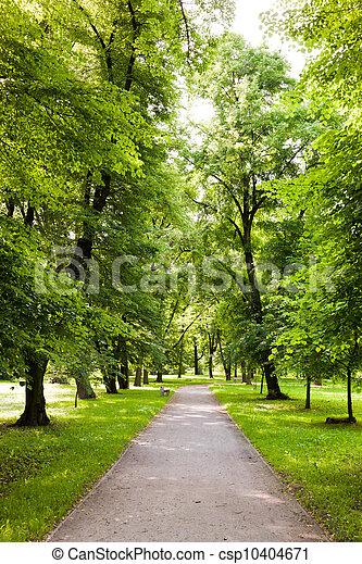 весна, парк, время - csp10404671