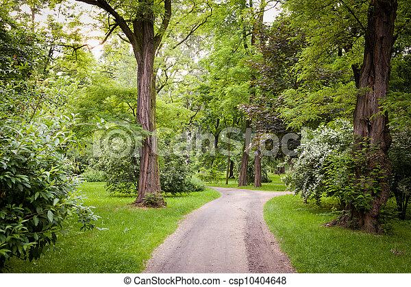 весна, парк, время - csp10404648