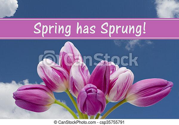 весна, сообщение, has, захмелевший - csp35755791
