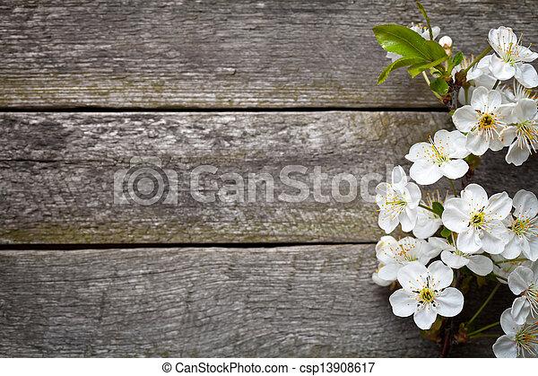 весна, цветы - csp13908617