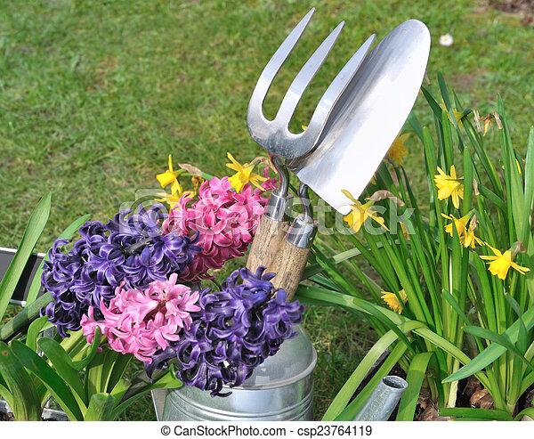 весна, цветы - csp23764119