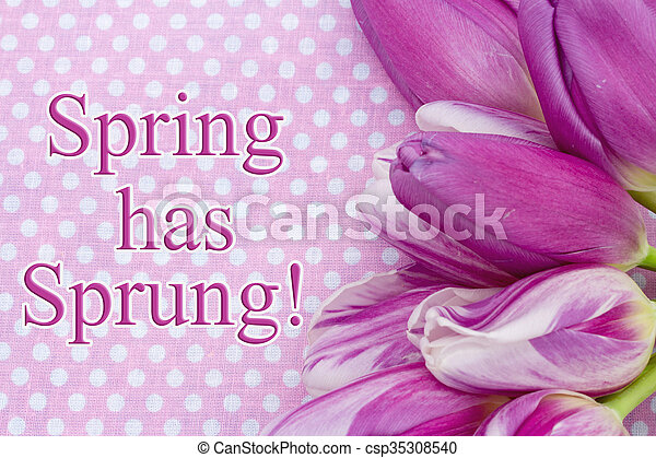 весна, has, захмелевший, приветствие - csp35308540