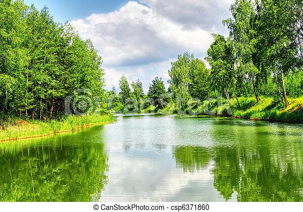 зеленый, пейзаж, природа - csp6371860