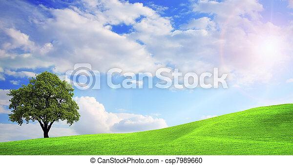 зеленый, пейзаж, природа - csp7989660