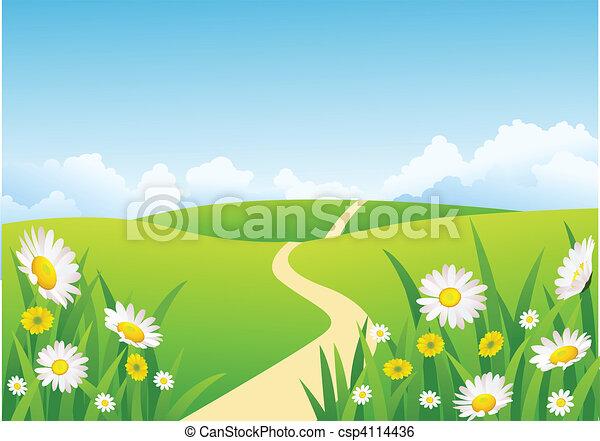 красивая, задний план, природа - csp4114436