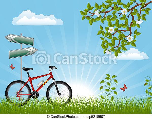 лето, велосипед, пейзаж - csp5218907