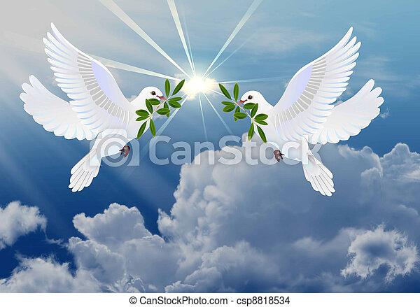 мир, doves - csp8818534
