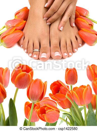 ноги, tulips - csp1422580