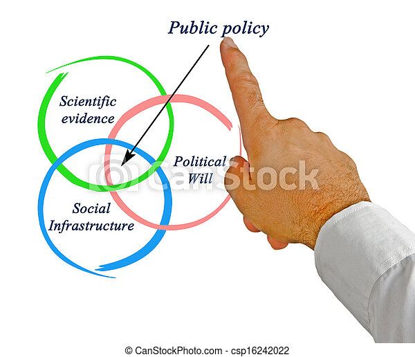 политика, общественности - csp16242022