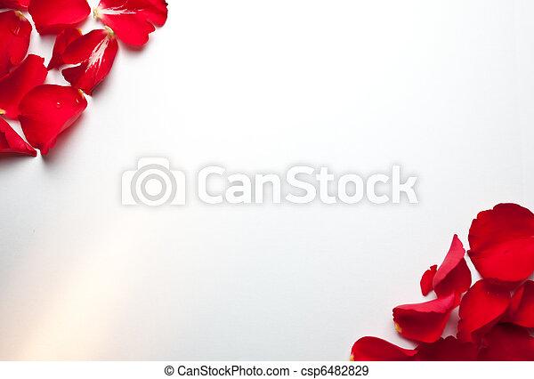 роза, бумага, задний план - csp6482829