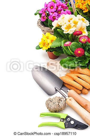 садоводство - csp18957110