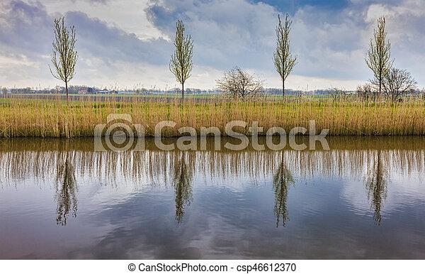 сельский, пейзаж, голландский - csp46612370