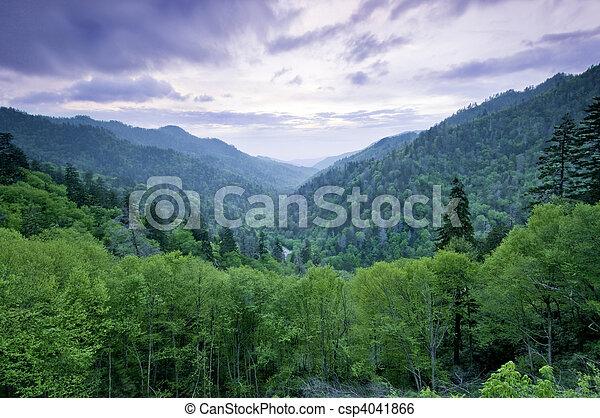 הרים, אפוף עשן - csp4041866