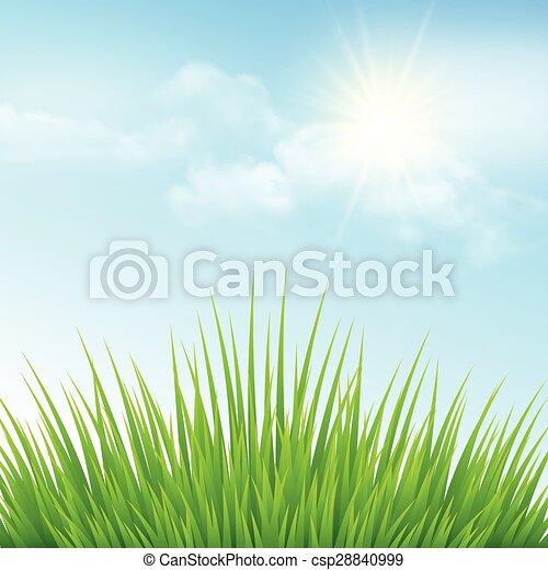 כחול, sky., דוגמה, וקטור, דשא ירוק - csp28840999