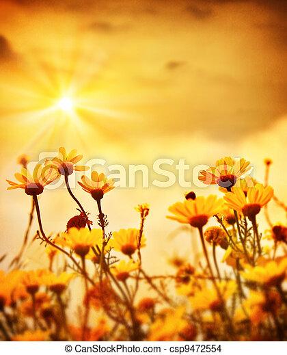 מעל, פרחים, שקיעה, חם - csp9472554