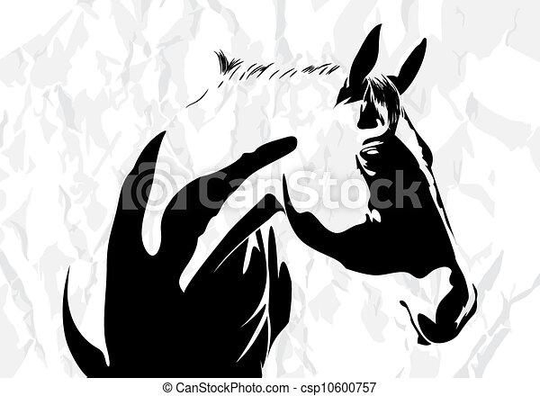 סוס, וקטור - csp10600757
