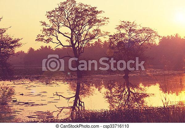סרי לנקה, אגם - csp33716110