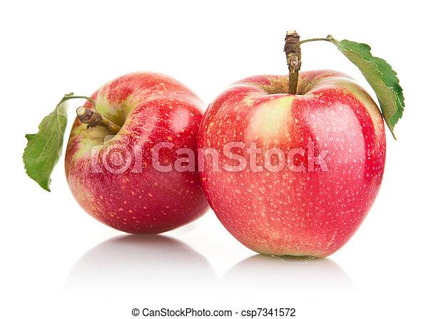 עלה ירוק, תפוח עץ, פירות - csp7341572