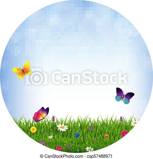 פרחים, דשא, כדור - csp57488971