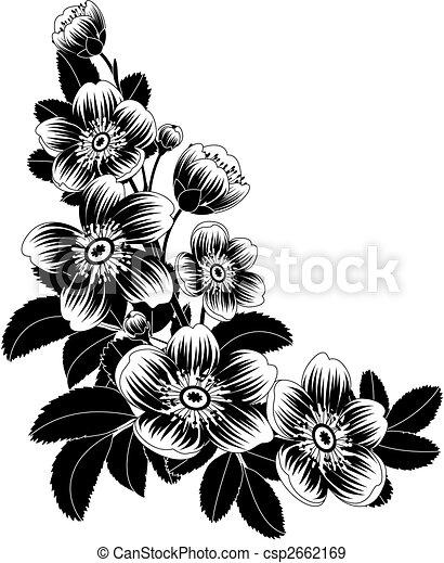 פרחים - csp2662169