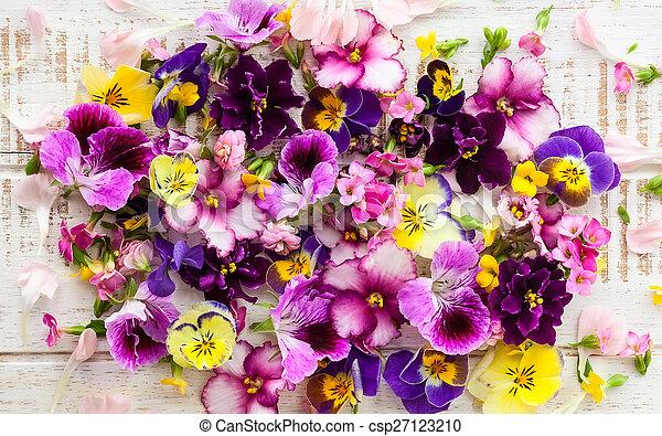 פרחים - csp27123210