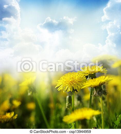 פרחים - csp13944959