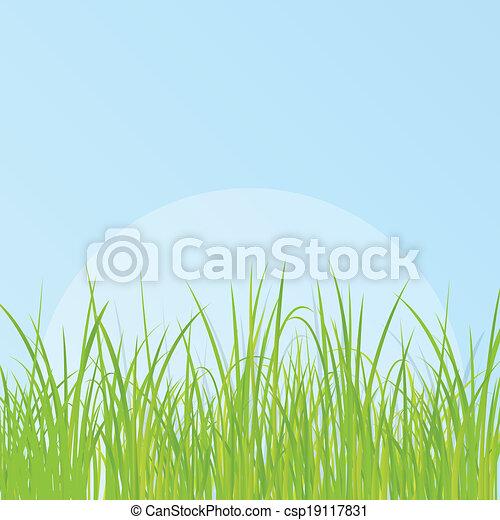 פרט, דשא, דוגמה, רקע - csp19117831