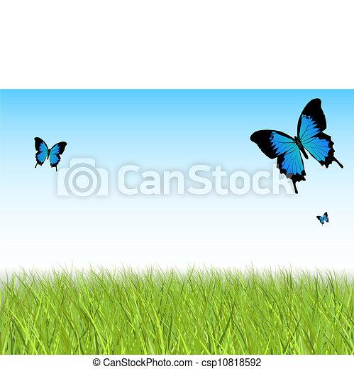 פרפר, דשא - csp10818592
