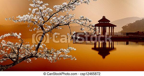 שמש, אגם, טייוואן, ירח - csp12465872
