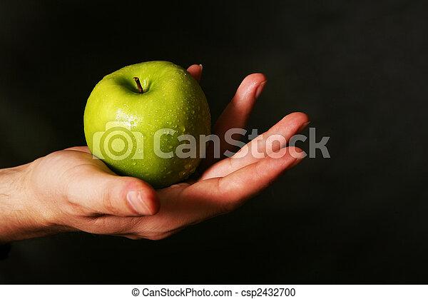 תפוח עץ, רטוב - csp2432700