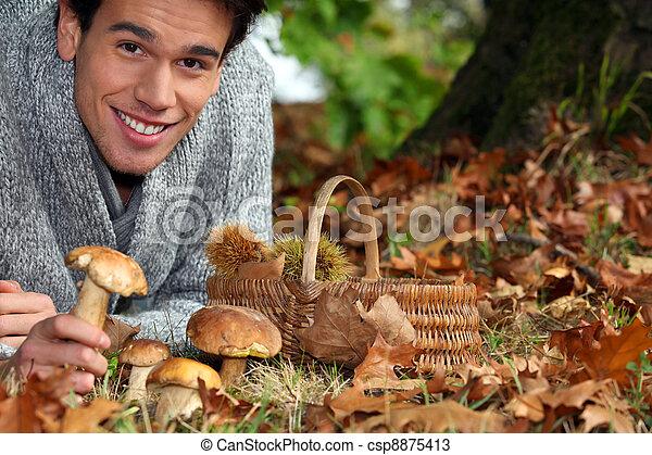 きのこ, 収集, 人, くり毛, 森林 - csp8875413