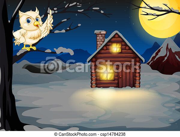 つけられる, フクロウ, 木の枝, 家 - csp14784238