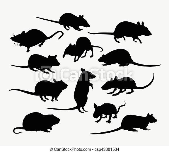 ほ乳類, ネズミ, シルエット, 動物, マウス