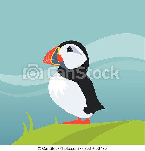 アイスランド ツノメドリ 鳥 平ら スタイル 色 アイスランド