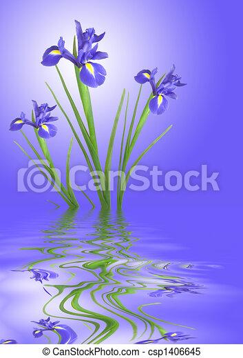 アイリス, 花, 平穏 - csp1406645
