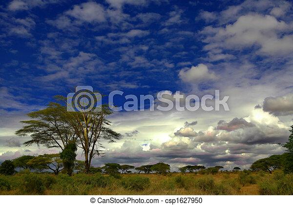アフリカ - csp1627950