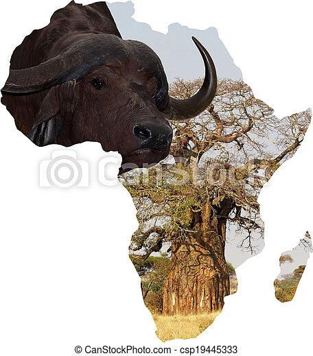 アフリカ - csp19445333