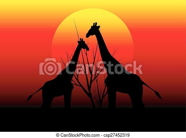 アフリカ, 日没, キリン - csp27452319