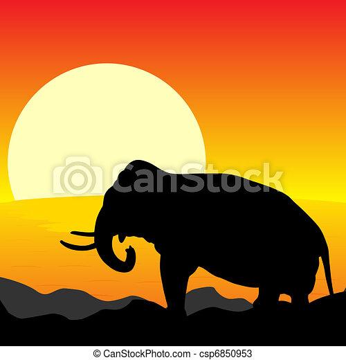 アフリカ, 日没 - csp6850953