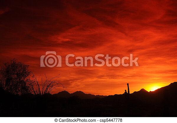 アリゾナ, 日没 - csp5447778
