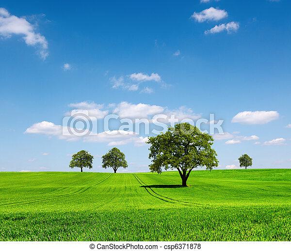 エコロジー, 緑の風景 - csp6371878
