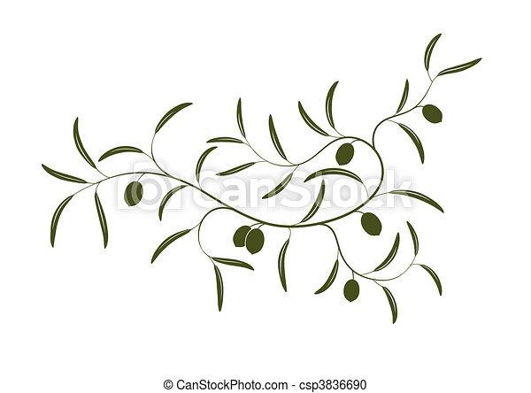 オリーブの枝 - csp3836690