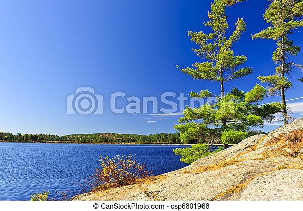 オンタリオ, カナダ, 海岸, 湖 - csp6801968
