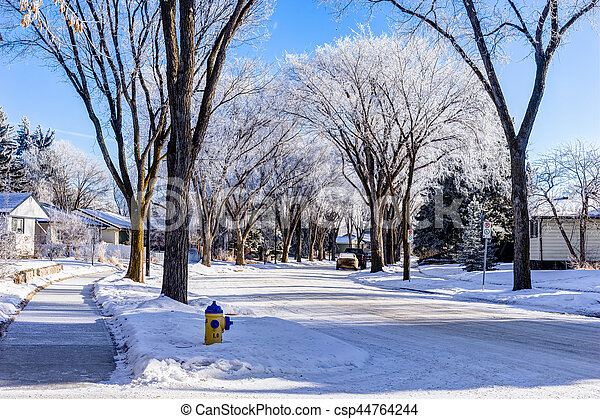 カナダ, 都市, 冬, エドモントン, 通り, アルバータ - csp44764244