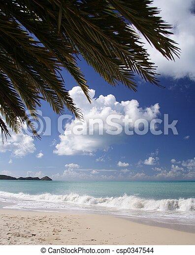 カリブ浜 - csp0347544