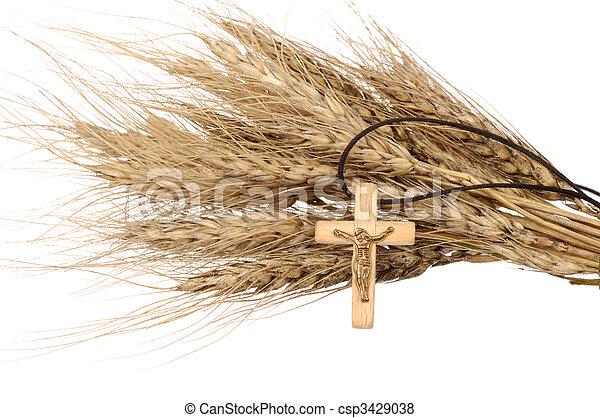 キリスト教徒, 小麦, 交差点 - csp3429038